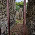 Pompei_20140802_101552