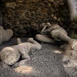 Pompei_20140802_105412